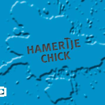 Hamertje Chick